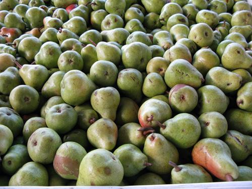 Pears2s