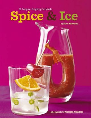 Spice and ice by kara newman review