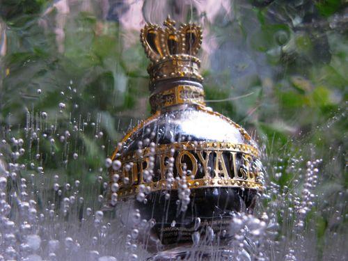 Super closeup bottle in clear ice2_tn