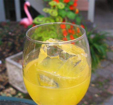 Perudriver cocktail pisco orange juice and orange liqueur