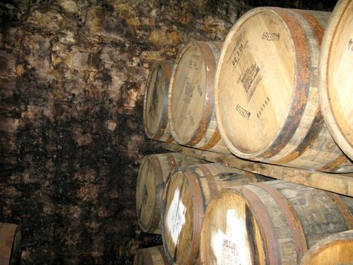 Fettercairn distillery barrels moldy walls