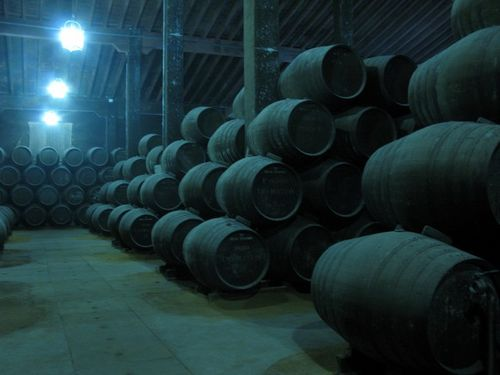 Bodegas grupo estevez 14_tn