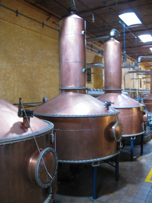 Copper pot stills tequila jose cuervo distillery2_tn