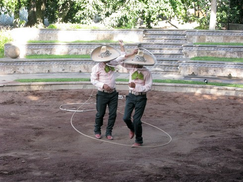 Horse and lasso show tequila jose cuervo distillery4_tn