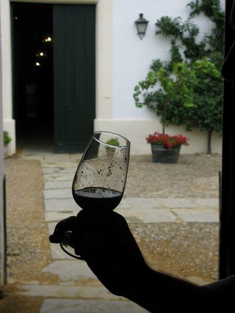 Bodega Gonzalez Byass yeast glass_tn
