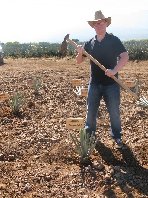 Camper english planting agave at tequila jose cuervo field4_tn