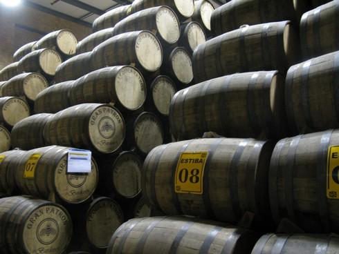 Aging casks patron tequila distillery_tn