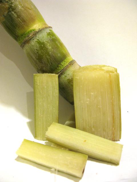 Sugar cane cut