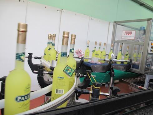 Bottle line pallini distillery2_tn