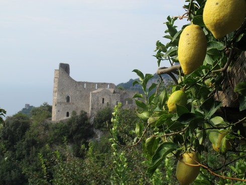 Amalfi coast lemon tour monastary lemon view_tn