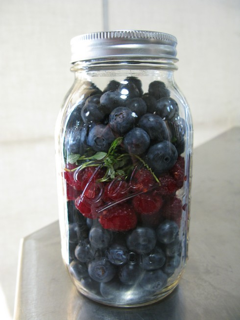 Jar of shrub before vinegar_tn
