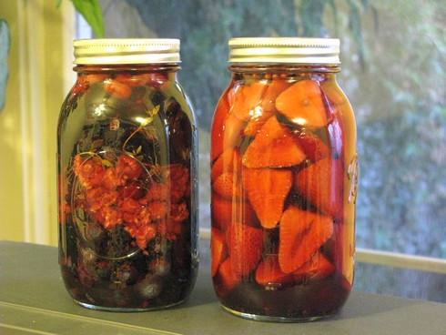 Shurbs in jars_tn
