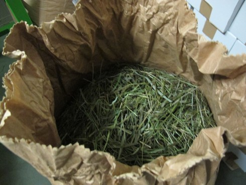 Sack of bison grass polmos bialystok distillery (2)_tn