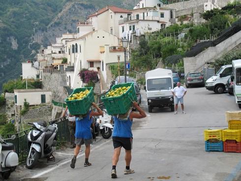 Carrying lemons amalfi coast lemon tour8_tn