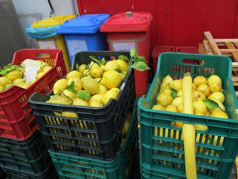 Castier agrumi de riso washing lemons2_tn