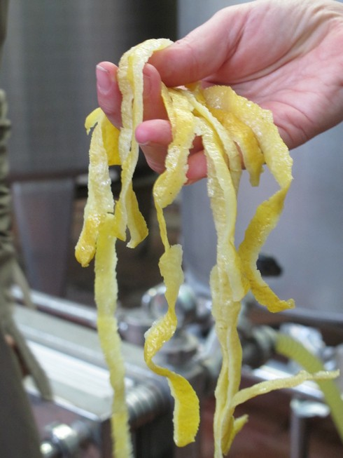 Lemon peels pallini distillery_tn