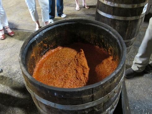 Tabasco pepper mash in barrel_tn