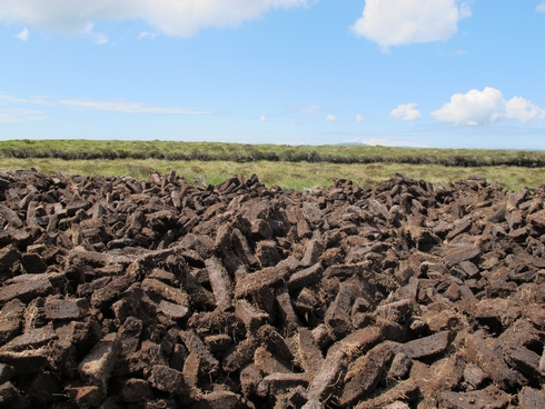 Dried peat in field Laprhoaig Distillery Islay Scotland2_tn