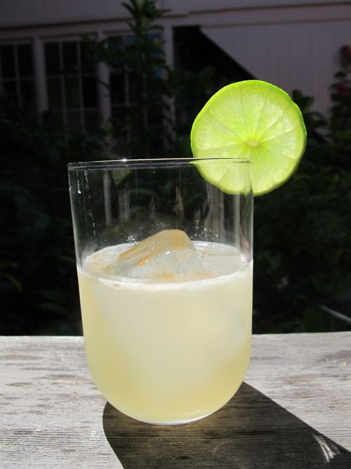 NOLA Tequila MockingbirdM