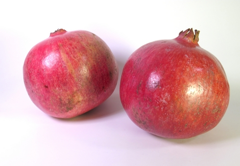 Two pomegranates_tn