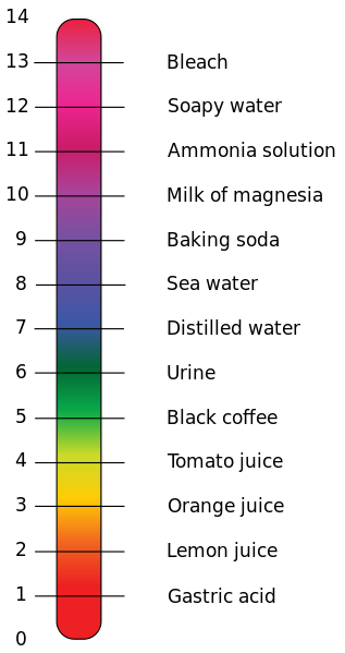 A Ph Scale With Annotated Examples Of Chemicals At Each Integer Value Author Edward Stevens