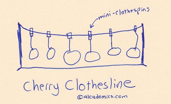 Cherry clothesline