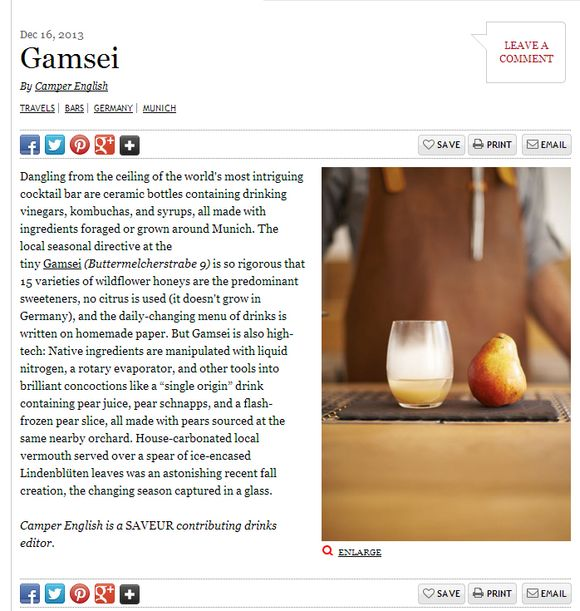 Gamsei online