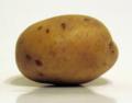 Potato10