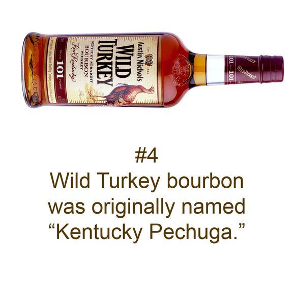 Brand Myth 4 turkey