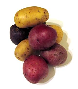 Potato4