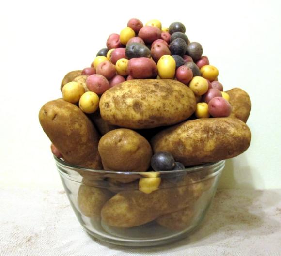 Oven Bag Potatoes Bags of Mini-potatoes