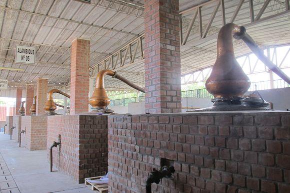 Vinas de Oro Pisco Distillery Peru still5