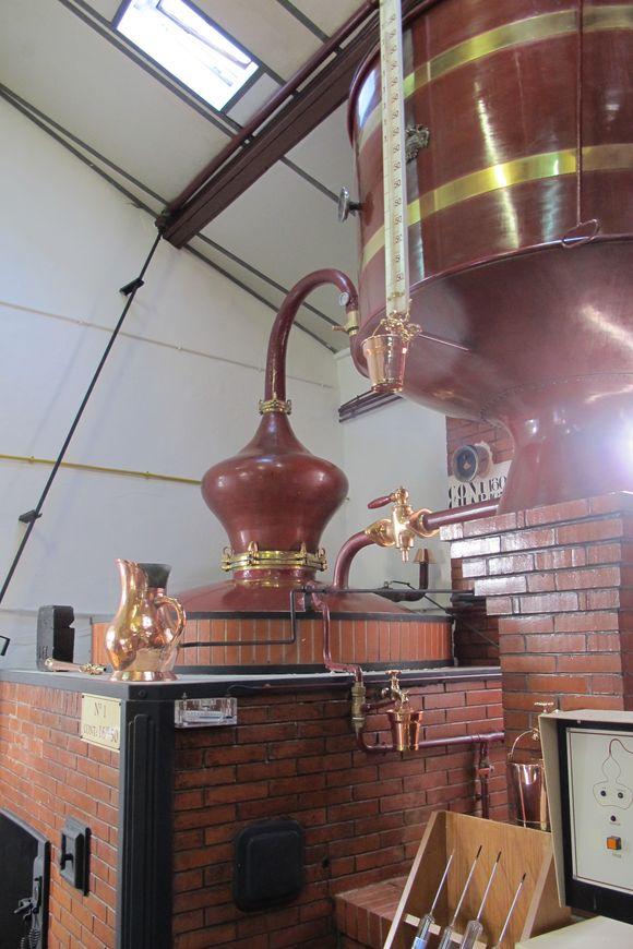 Distillery for Hine Cognac11