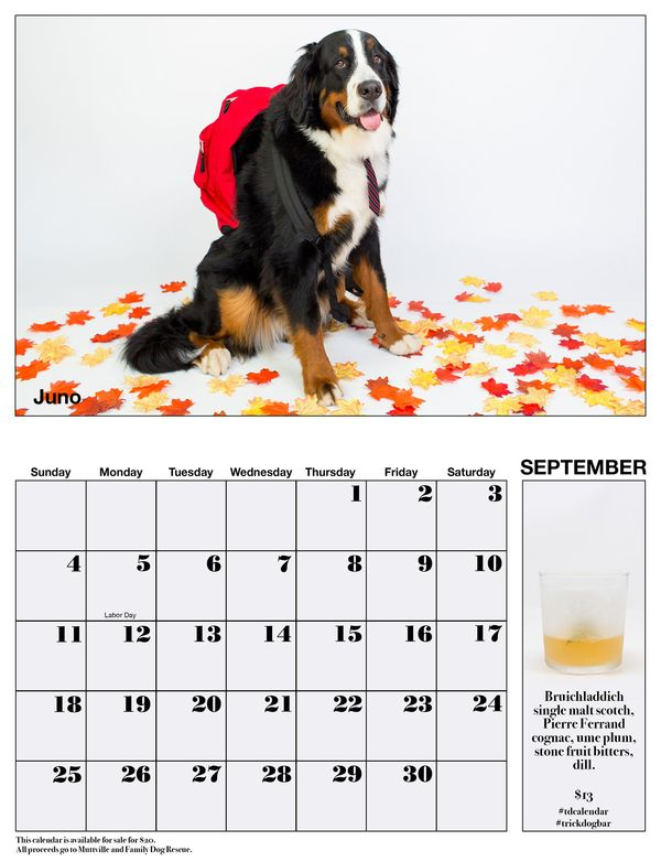 Trick Dog S New Best In Show Doggie Calendar Cocktail Menu Alcademics