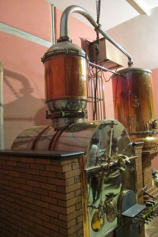 Distillery Visit Domaine Boingneres Armagnac Alcademics