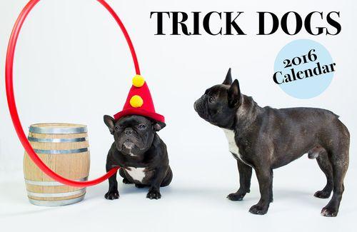 TD Dog Calendar DEC_sm
