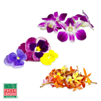 Edible-Pansies-Orchids-Sampler_FreshEdiblePansies&OrchidsSampler_1