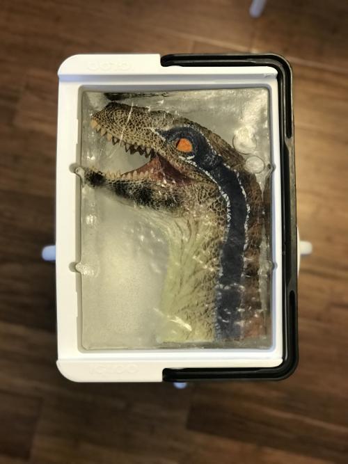 Dinosaur mask ice block9