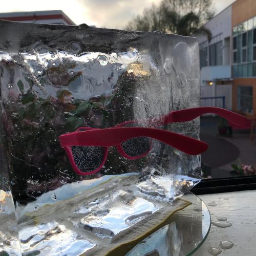 Sunglasses In Ice Block  - 23